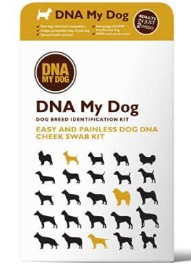 DNA my dog product not square