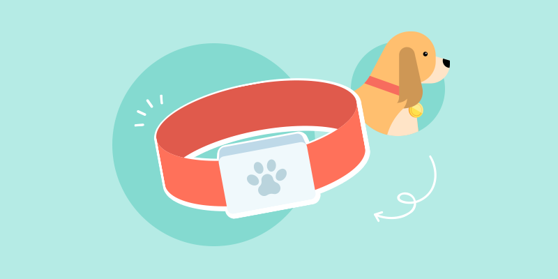 Best-Dog-Fitness-Trackers