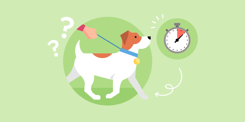 How much exercise should your dog get?